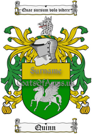 Quinn (Ireland) Coat of Arms Family Crest PNG Instant Image Download