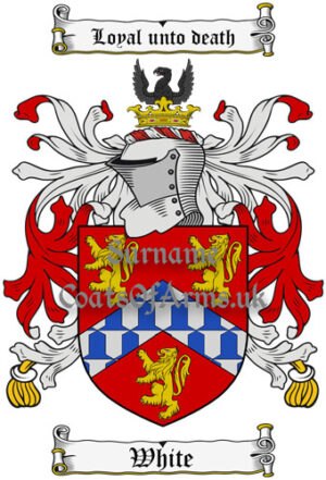 White (England) Coat of Arms Family Crest PNG Instant Image Download