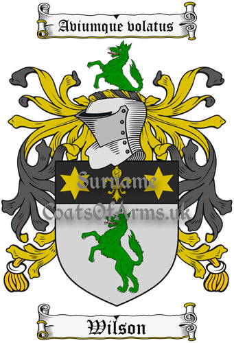 Wilson (Ireland) Coat of Arms Family Crest PNG Instant Image Download