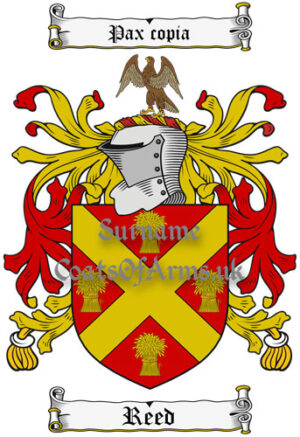Reed (England) Coat of Arms Family Crest PNG Image Instant Download