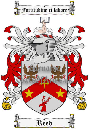 Reed (Scotland) Coat of Arms Family Crest PNG Image Instant Download