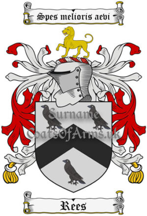 Rees (Wales) Coat of Arms Family Crest PNG Image Instant Download