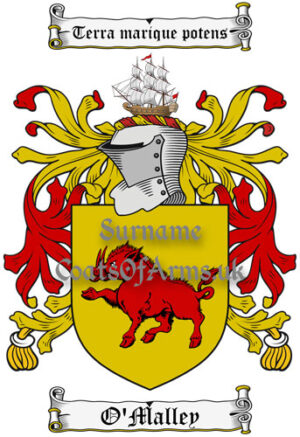 O'Malley (Ireland) Coat of Arms Family Crest PNG Image Instant Download