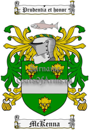 McKenna (Ireland) Coat of Arms Family Crest PNG Image Instant Download