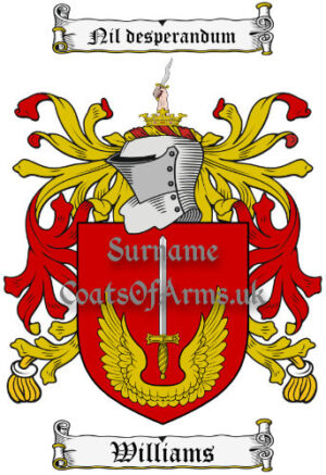 Williams (Irish) Coat of Arms Family Crest PNG Image Instant Download